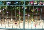 open house - flower fence